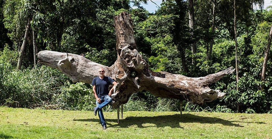 Um tronco para Exu