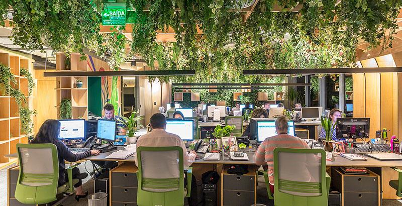 Escritório em São Paulo tem projeto todo baseado no design biofílico