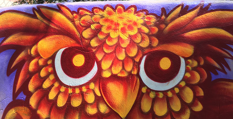 Paraisópolis ganha muros coloridos para abrigar pacientes com Covid