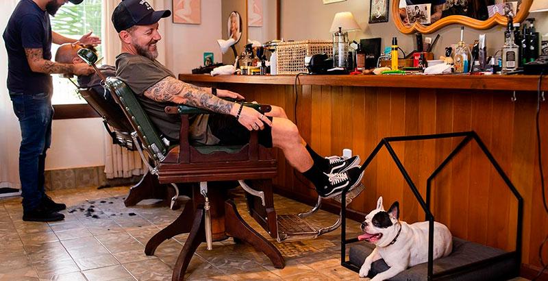 Cia do Móvel linha de móveis decorativos para pets